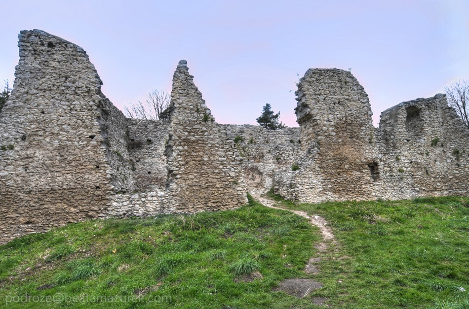 Zamek Bydlin 03