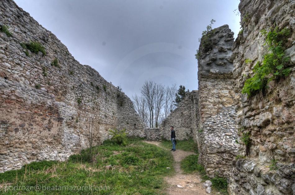 Zamek Bydlin 04