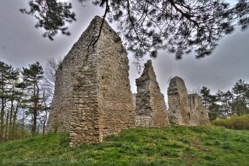 Zamek Bydlin 05