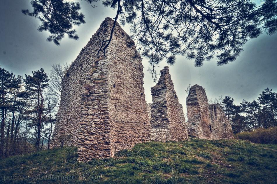 Zamek Bydlin 05-Edit