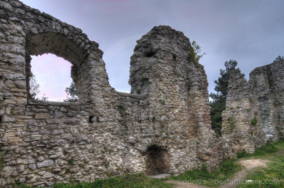 Zamek Bydlin 09