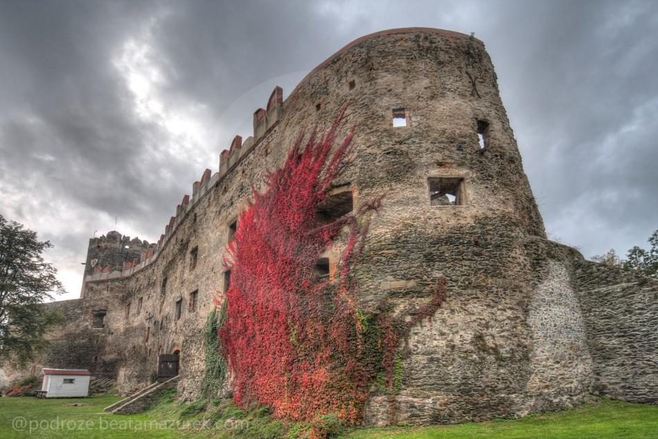 Zamek Bolkow 20