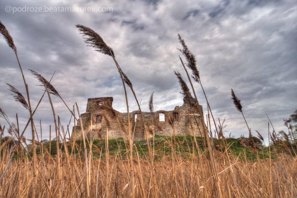 Zamek Siwierz 06