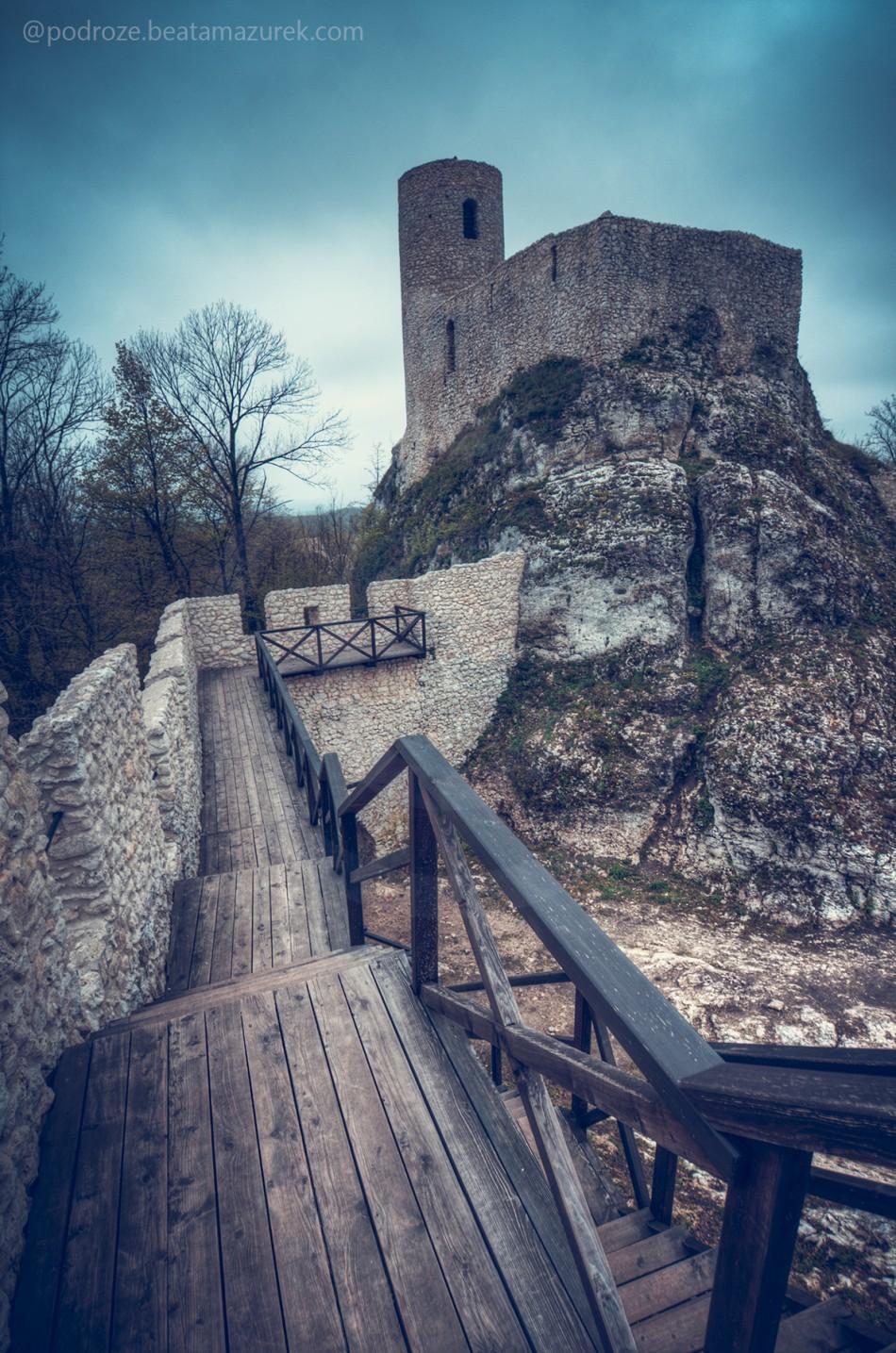 Zamek_Pilcza_03