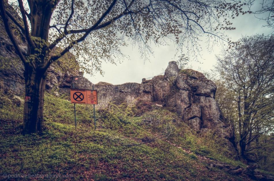 zamek_bakowiec_06