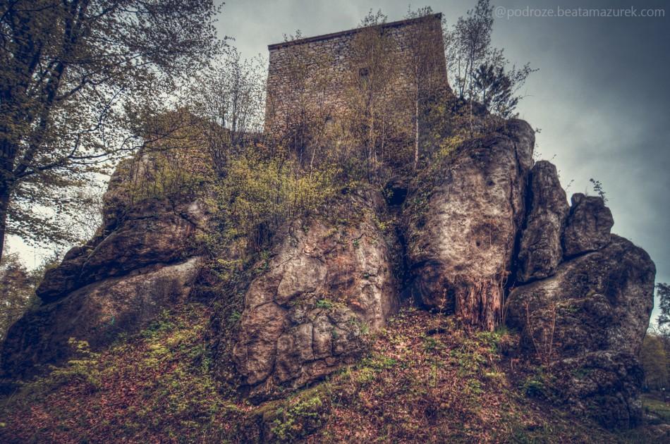 zamek_bakowiec_07
